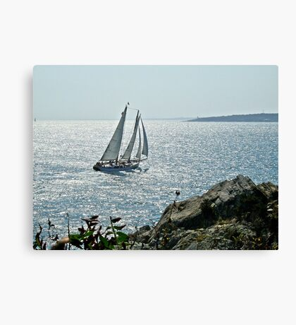 A Perfect Sailing Day in Rhode Island Canvas Print