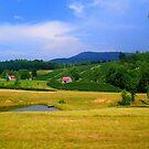 Breathtaking North Carolina Country by Mechelep
