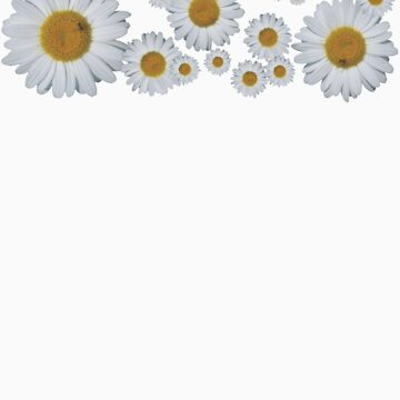 For the love of Daisies! by TeeLoft