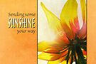 Sending Sunshine (Card) by Tracy Friesen
