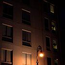 Streetlight Illumination  by Allison  Flores