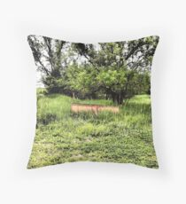 Trails and Treasure Fields Throw Pillow