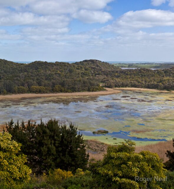 Tower Hill, Warnambool, Victoria, Australia by Roger Neal