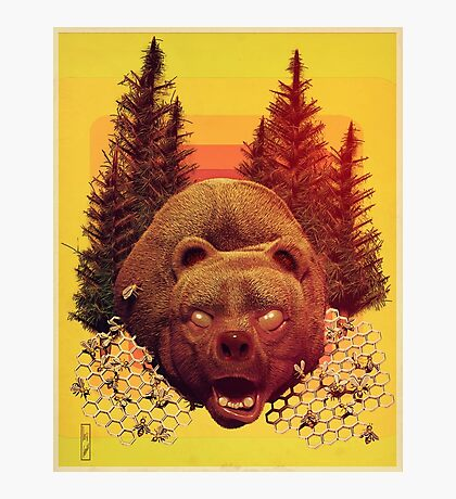 'OTSO-King of the Forest' Photographic Print