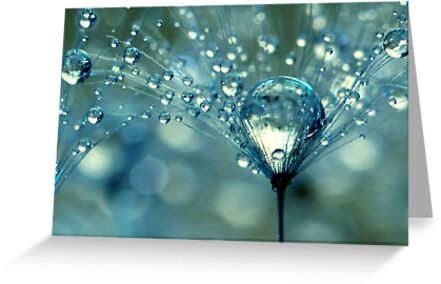 Blue Sparkles by Sharon Johnstone
