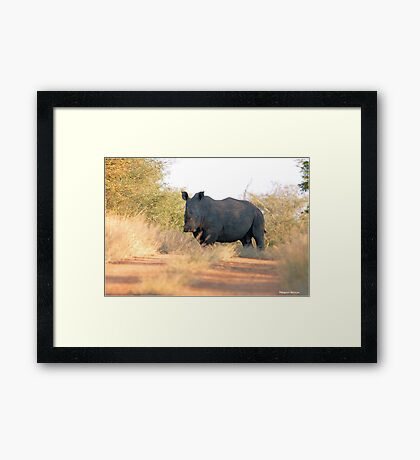 AND WHERE DO YOU THINK YOU'RE GOING ! Framed Print