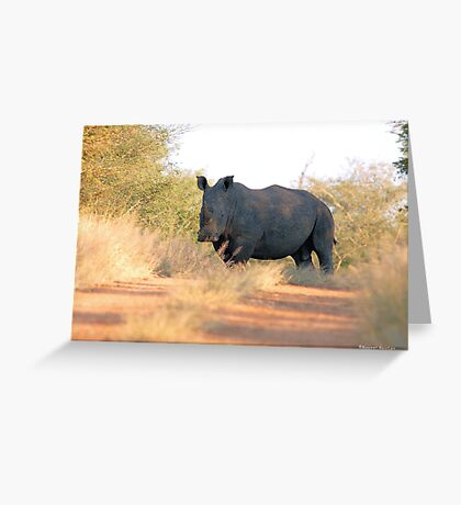 AND WHERE DO YOU THINK YOU'RE GOING ! Greeting Card