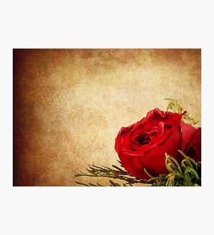 So Romantic  Photographic Print