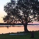 tweed river dusk ... by gail woodbury