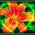 Orange Fire Lily Heart by Mechelep