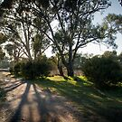 Wimmera Walk by Andrew Cowell