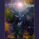 Solstice Card by Rayvn Navarro