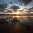 Sunset and Seaweed by Samantha Higgs