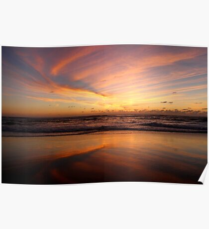Feathered Sunset Poster