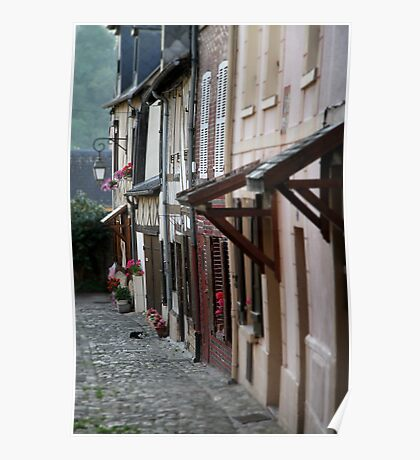 French Cottages Poster