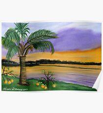 Floridian Sunset Poster