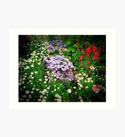Lomoish Flowers  in Mirrored Frame Kunstdruck