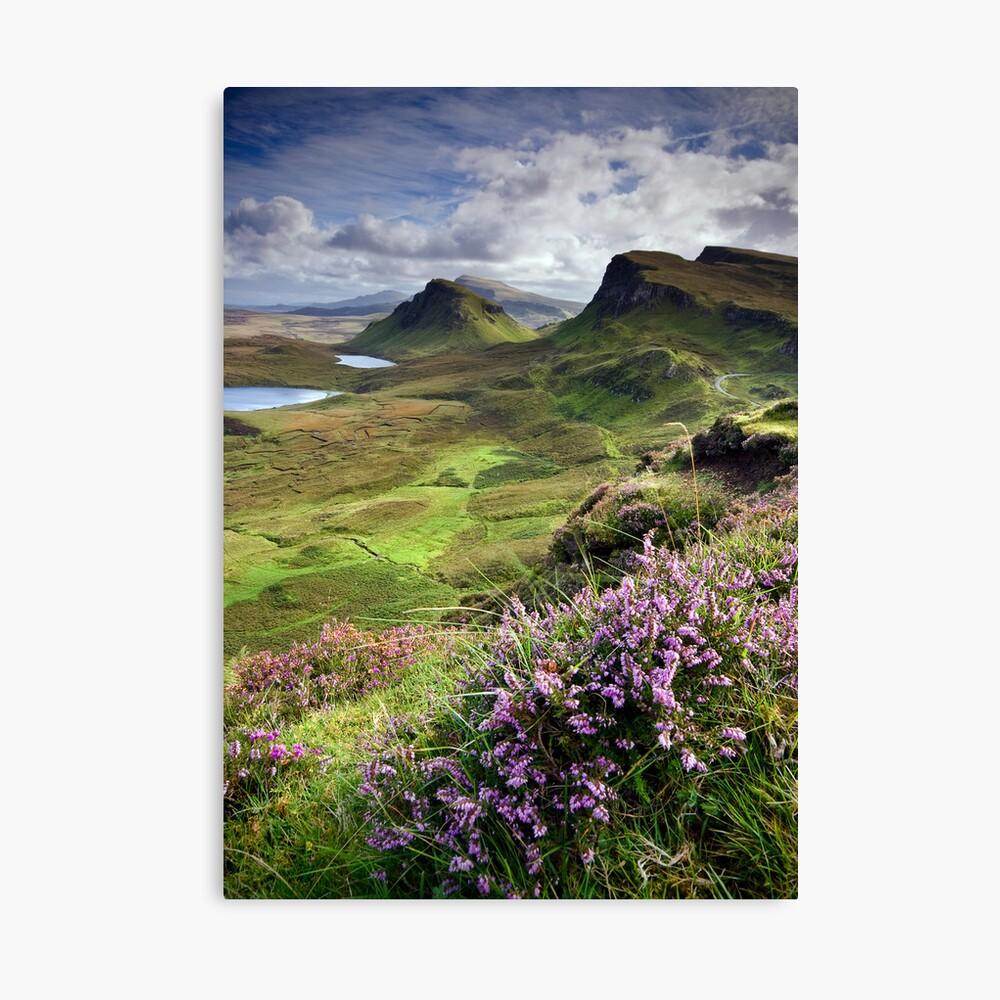 Scotland: My Bonny Heather Canvas Print