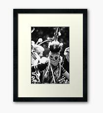 Pow Wow Framed Print