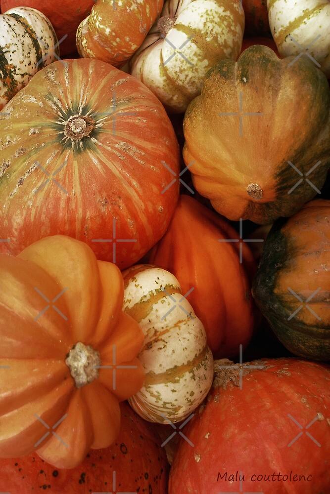Pumpkin Time by MaluC