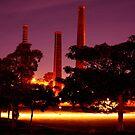 Sydney Park Newtown by bouche