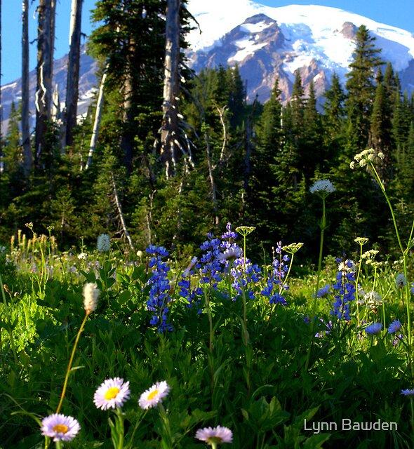 """""""Wild Flowers"""" by Lynn Bawden"""