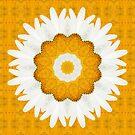 daisy mandala 01 by Aimelle