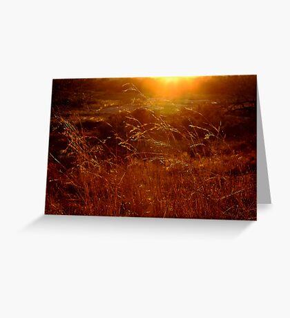 Toulon Sunset Greeting Card