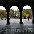 Central Park, Bethesda Fountain, Fall Colors by lenspiro