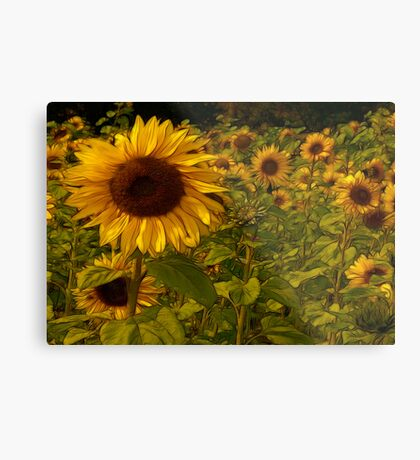 Fractual Sunflowers Metal Print
