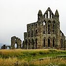 Whitby Priory, Yorkshire by hans p olsen