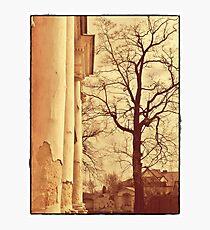 forgotten palace  Photographic Print