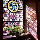 Beautiful Window 4 by Jacinthe Brault