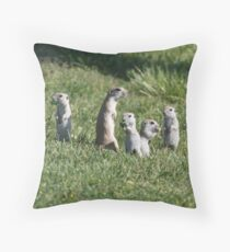 flicker tails eating candy Throw Pillow