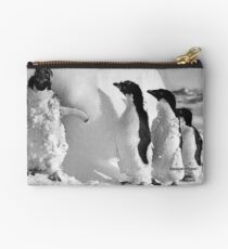 Ice cased Adelie penguins after a blizzard at Cape Denison Studio Pouch