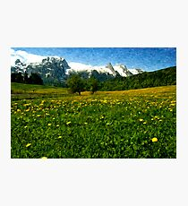 May in Austria Photographic Print