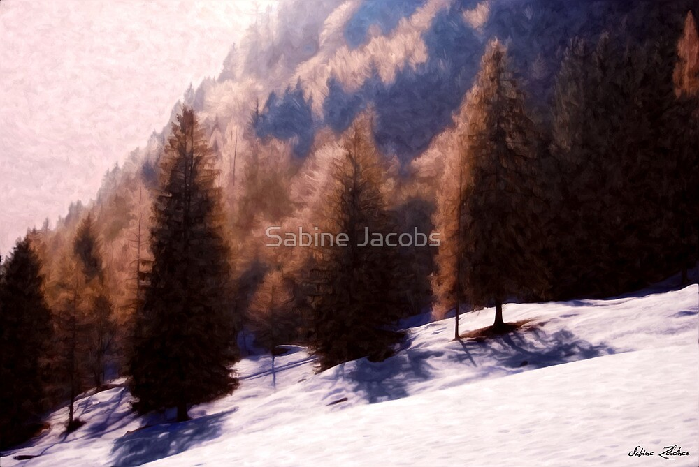 Winter Morning by Sabine Jacobs