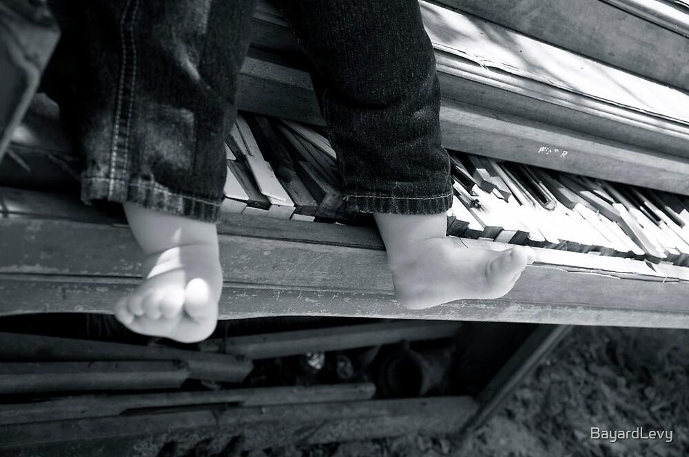 Music express by BayardLevy