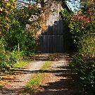 Hidden Barn by MaluC