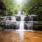 Terrace Falls - Blue Mountains by Dilshara Hill