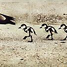 Three Little Ducks by Trish Woodford