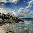 Jaffa Old Harbor by barlevitay