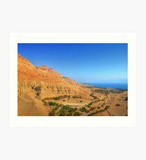 Dead Sea - Ein Gedi Art Print