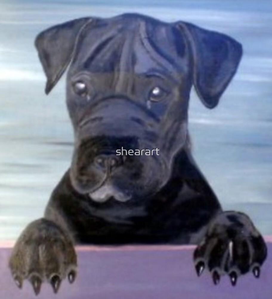 Black Dog by shearart