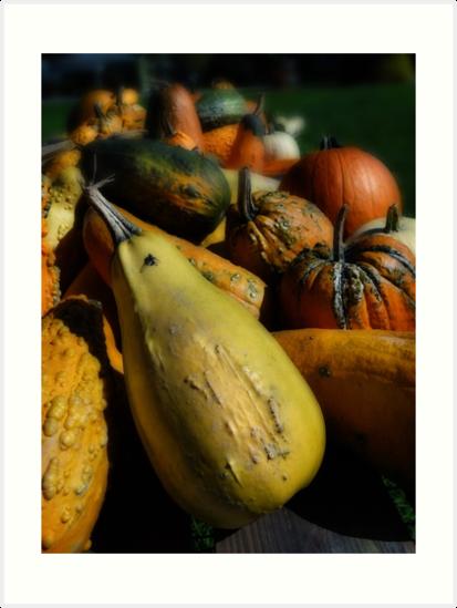 Fruits of Fall  by vigor