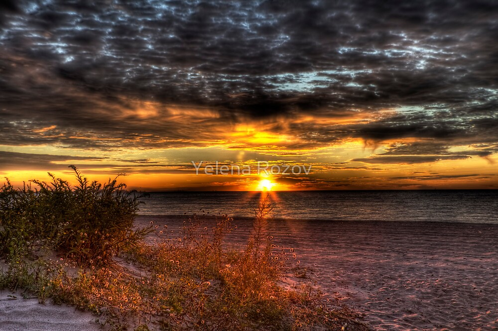 Sunrise over New York Bay by Yelena Rozov