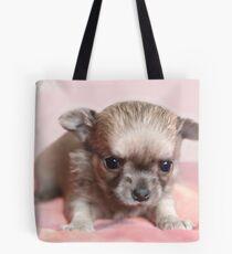 Sweet chihuahua puppy Tote Bag