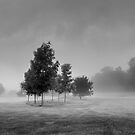 Lost and found by redtree