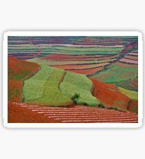 Red Land 06 Sticker