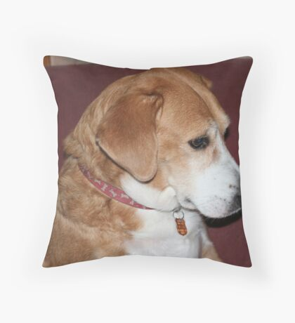 Izzie Throw Pillow